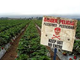 Dangers of pesticides to humans
